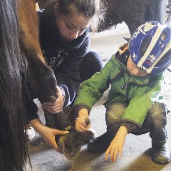 Heilpädagogisches Reiten - dazu gehört auch das Putzen und Satteln des Pferdes und das sorgfältige Auskratzen seiner Hufe.