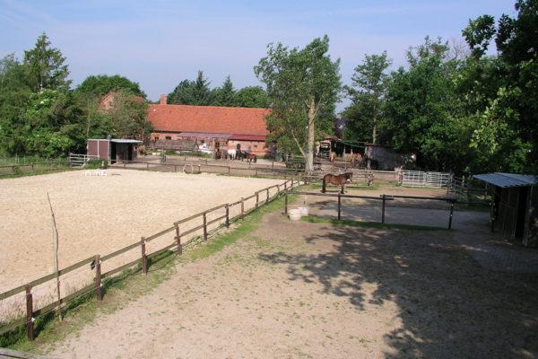 Heilpädagogisches Reiten Hof FYLGJA, Paddocks und Reitplatz