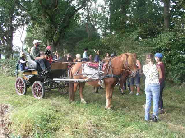 Mitnahme der Kutsche beim Nachholritt - geplant und durchgeführt von der Ausbildungsgruppe der Zusatzausbildung Heilpädagogisches Arbeiten mit Pferden / Heilpädagogisches Reiten.