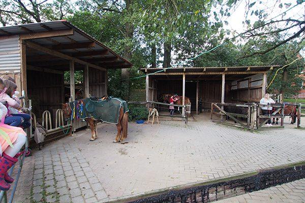 Pferde werden geschmückt für die Theatervorstellung...